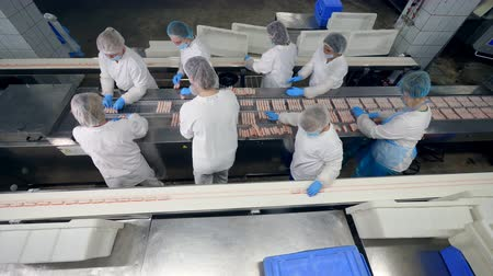 sterilità : Top view of female workers in a food production facility