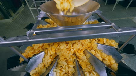teiler : Heap of fried chips falling into a sorting container in a facility.