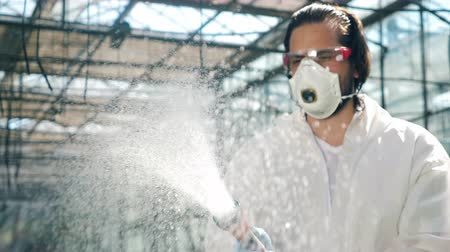 botanikus : Male biologist sprays water on greenhouse plants.