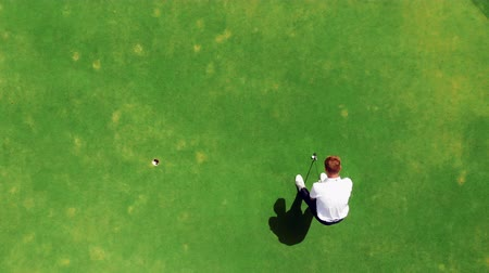 フェアウェイ : Professional golfer practices on a course, putting a ball into a hole. 動画素材
