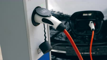 foglalat : Process of electrical recharge of the car Stock mozgókép