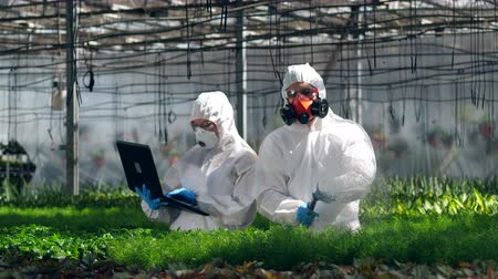 herbicides : Plants are getting watered with chemicals by two scientists at work
