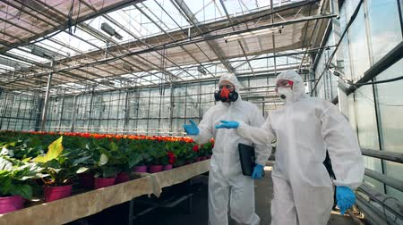 herbicides : Two chemists are walking along the glasshouse and talking Stock Footage