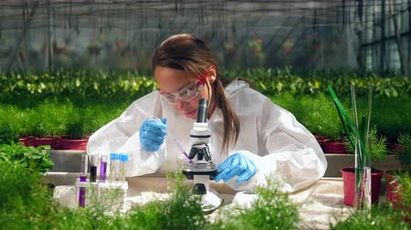herbicides : Female scientist is working with microscope and chemicals Stock Footage