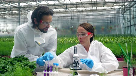 биохимия : Two biologists are having a research with chemicals in the greenery