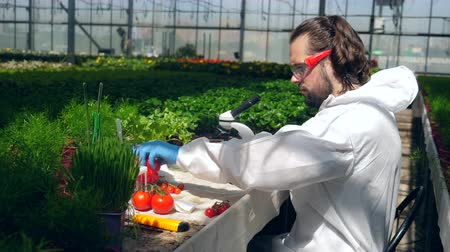 herbicides : Male specialist is analyzing vegetables under microscope Stock Footage