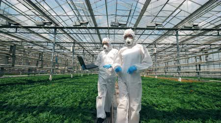 herbicides : Greenhouse and scientists walking along it and observing plants