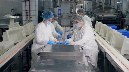inspector : Factory workers pack products into plastic containers in a facility. Stock Footage