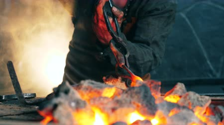 coal fired : Professional blacksmith holds tongs while heating a knife. Stock Footage