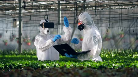 prejudicial : Two scientists are holding a digital research in the greenhouse