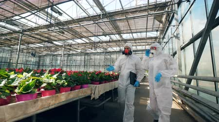 herbicides : Glasshouse with bright flowers and two chemists walking along them