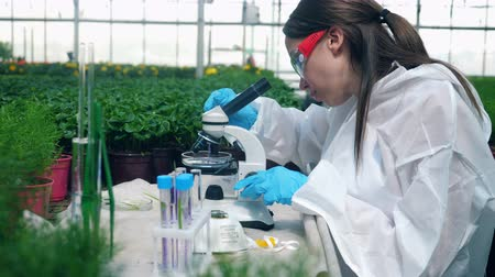 herbicides : Chemical research is getting done by a female agronomist