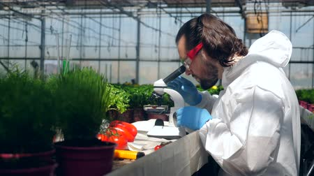herbicides : Male agronomist is analyzing chemicals under a microscope Stock Footage