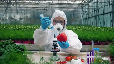 herbicides : Male scientist is chemically fertilizing vegetables
