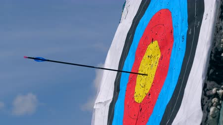 nakládané : An arrow is hitting the round target