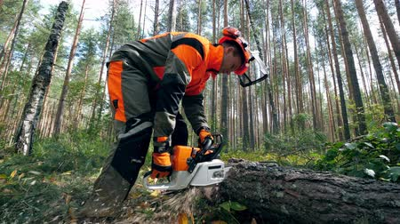 segheria : Woodworker is using a chainsaw to cut the tree Filmati Stock