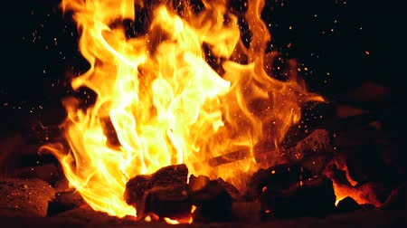 rabble : Burning fire with a rabble inside of it Stock Footage