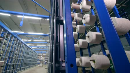 編まれた : Clews with white threads placed on racks in rows at a textile plant. Textile industry concept. 動画素材