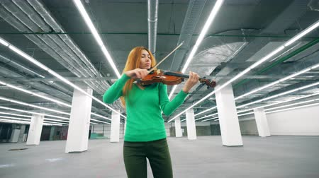 concert hall : Focused woman is playing the violin in the hall
