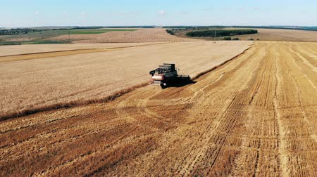 mechanically : Agricultural machines are reaping crops Stock Footage