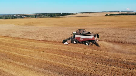 mechanically : Harvester-thresher is harvesting and processing rye