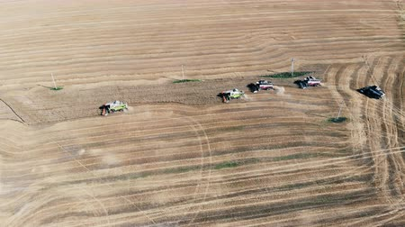 mechanically : Vast wheat field is getting mechanically harvested in a top view Stock Footage