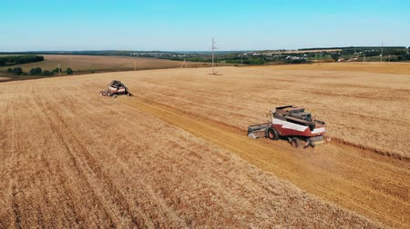 mechanically : Crops are getting harvested by the combines
