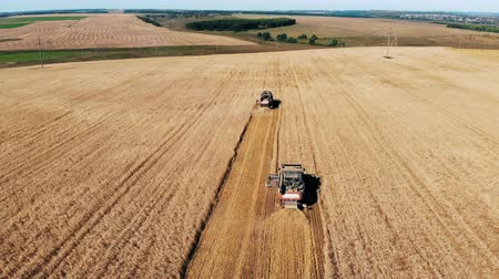 reaping : Mechanical combines are moving along a vast field in a top view