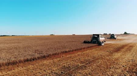 mechanically : Grain harvesters are reaping crops in the field