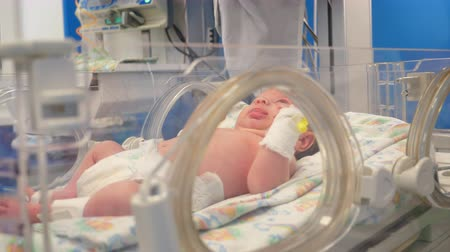neonatology : Doctors check newborn in a special incubator at a clinic.