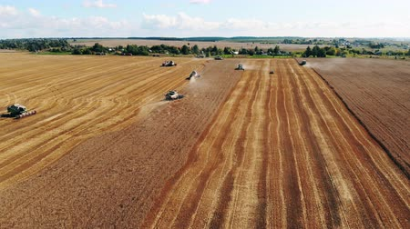 reaping : Harvesting process held by the agricultural combines
