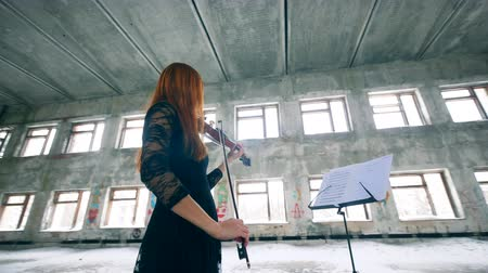 string instrument : Female violinist is playing while looking at the music rack