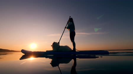 sucção : A woman is standing on a paddleboard and a dog is lying on it