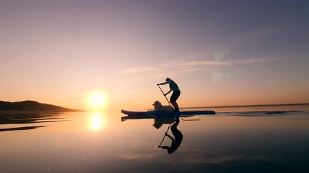 sucção : A lady is talking to her dog while standing on the paddleboard