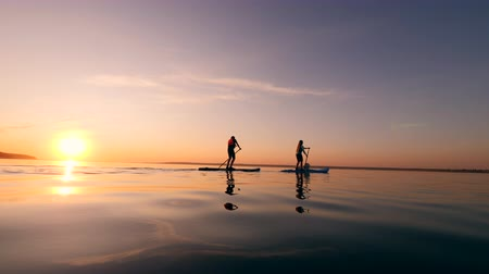 kürek çekme : Stand-up paddleboarding of a boy, a woman and a dog