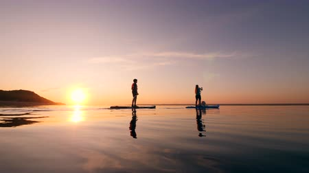 sucção : Two young people are paddleboarding with a dog