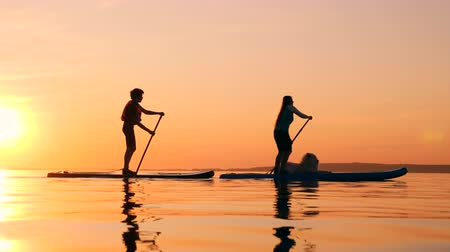 sucção : Sunset lake with mom and son riding paddleboards