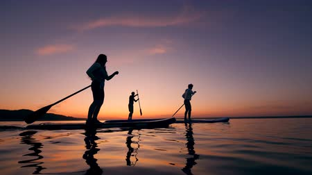 sucção : Young people are riding paddleboards across the sunset lake Stock Footage