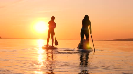 sucção : A woman with a dog and a boy are doing stand-up paddleboarding