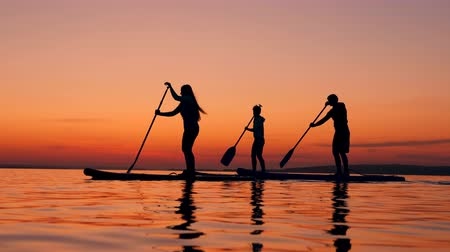 sucção : Young people are crossing sunset lake on paddleboards