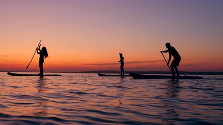 sucção : Group of young friends are riding paddleboards at sunset Stock Footage
