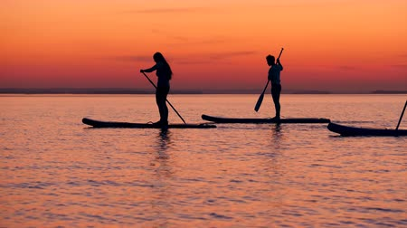 sucção : Stand-up paddleboarding of young people at sunset lake Stock Footage