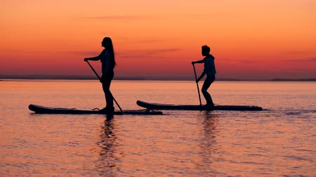 tutmak : Side view of young people doing SUP in the setting sun