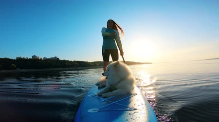 sucção : Front view of a lady and her dog riding a paddleboard Stock Footage