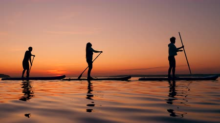 sucção : People training on a paddleboard.