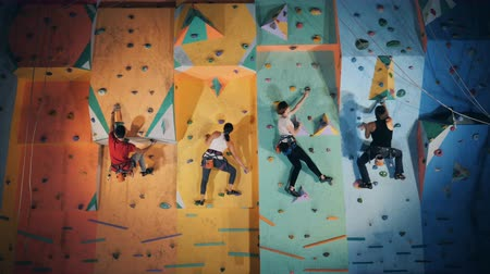 bouldering : Group of people are taking part in a clambering practice in a gym