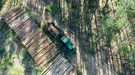 felling : View from above of the cut trees getting mechanically unloaded. Forest, tree logging, aerial view. Stock Footage