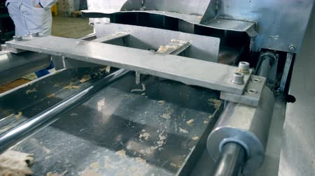 ração : Block of fish flesh is getting processed by the machine