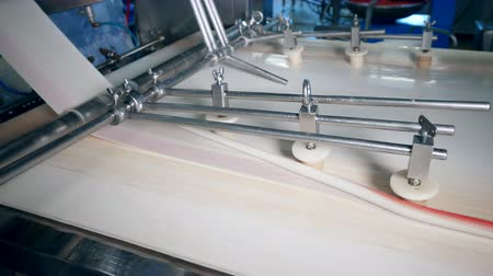 mechanically : A line of crab sticks is getting mechanically formed