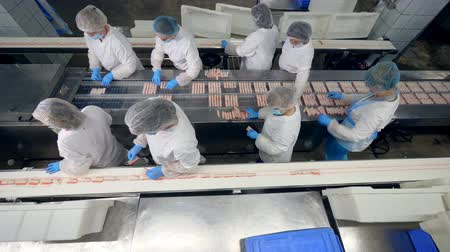 eenheid : Top view of factory staff processing and relocating fish sticks